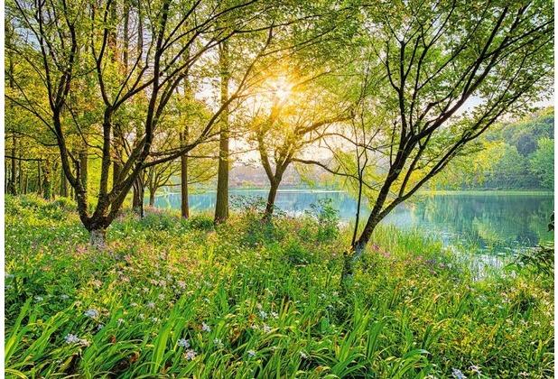 Komar Fototapete Spring Lake 368 x 254 cm   Hertie.de