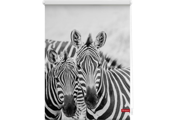 lichtblick rollo klemmfix ohne bohren blickdicht zebra schwarz wei. Black Bedroom Furniture Sets. Home Design Ideas
