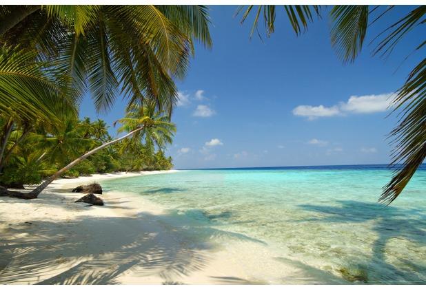 papermoon xxl poster fototapete mini 1 teil blue back beach 115 x 160 cm. Black Bedroom Furniture Sets. Home Design Ideas