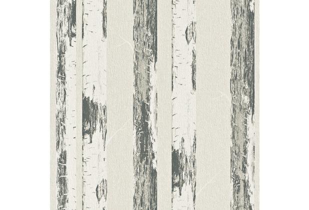 rasch vliestapete birke stamm 574531. Black Bedroom Furniture Sets. Home Design Ideas