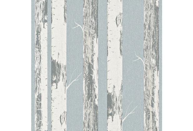 rasch vliestapete birke stamm 574555. Black Bedroom Furniture Sets. Home Design Ideas