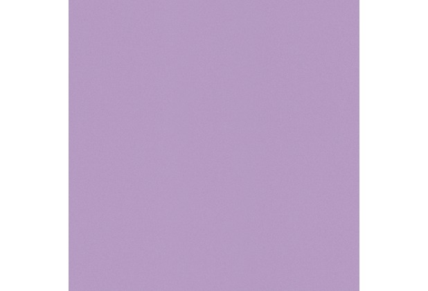 Rasch Vliestapete Wallpaper Color Uni 518009