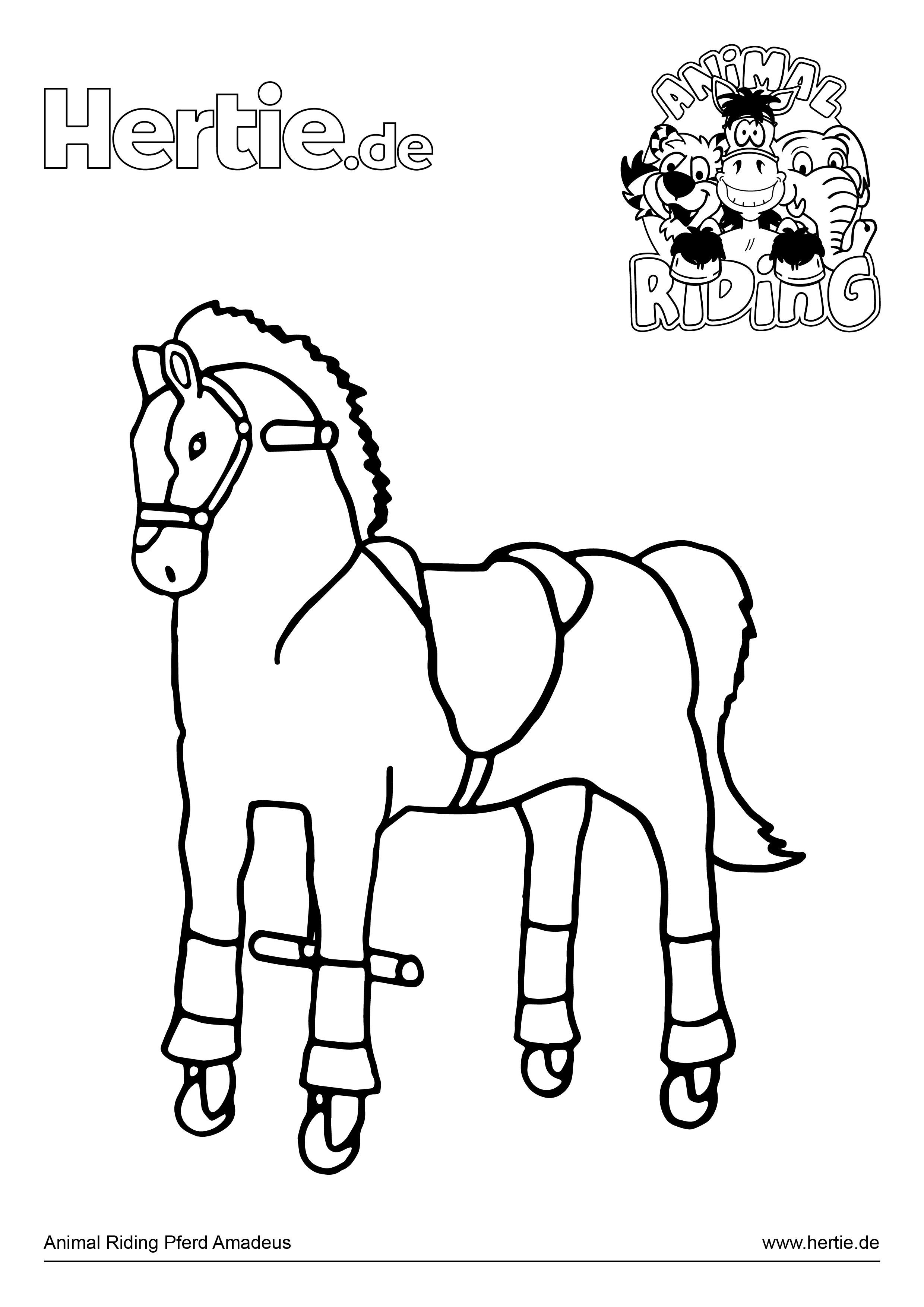 Ausmalbilder Mädchen Pferde : Ausmalbilder Pferd